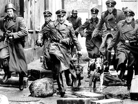 Half of the Germans feel the Jews are the New Nazis – News