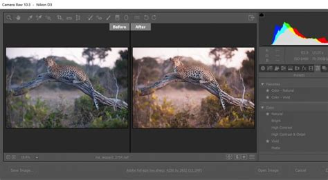 In Lightroom and Photoshop, Adobe Puts Profiles and