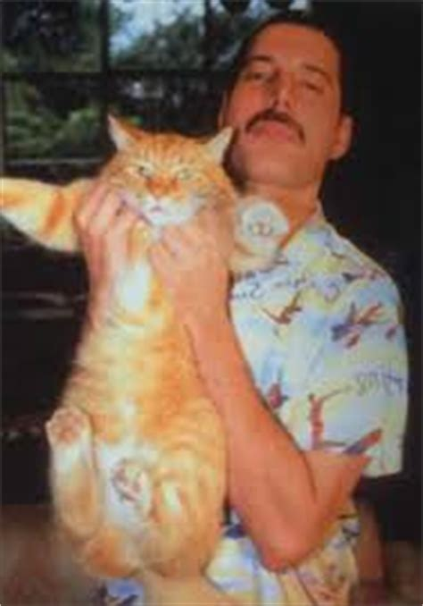 Last known photo of Freddie Mercury was with his cat Oscar
